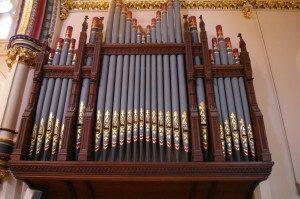 Organ 3